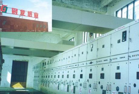 【资产重组】湛江冠龙纸业有限公司100%股权 1.68亿元